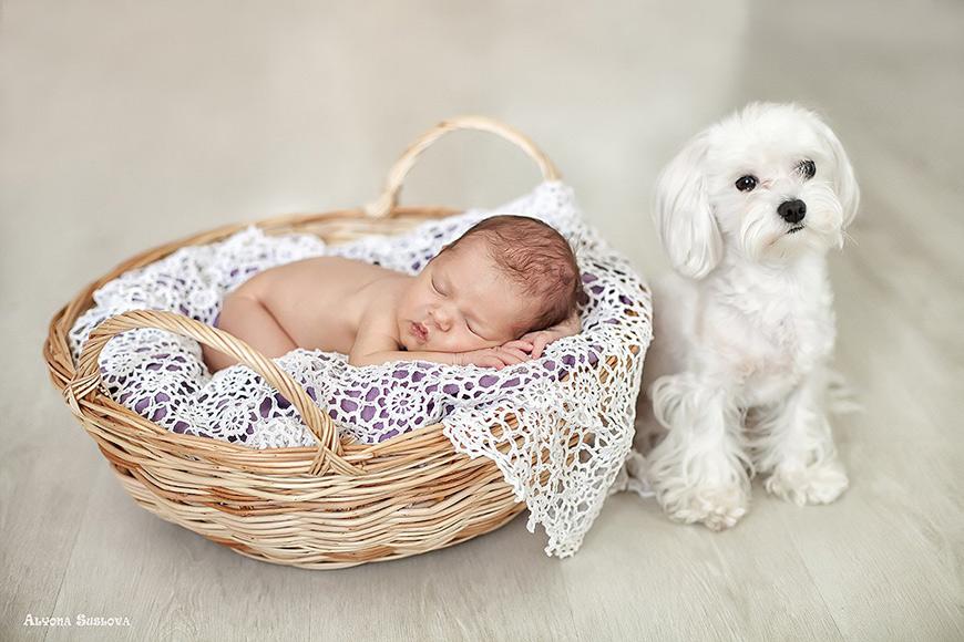 Аксессуары для фотосессии новорожденного своими руками